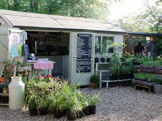 Image of the cafe at Mells walled garden to illustrate a blog about independant garden centres in Frome Somerset