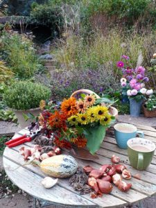 Cut flowers and cups of tea. Gardening workshops, floral workshops and garden tours in somerset wiltshire bath and bristol