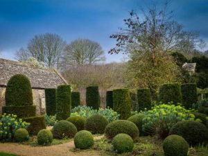 Image of the garden at hanhan court. Garden tours in somerset and wiltshire