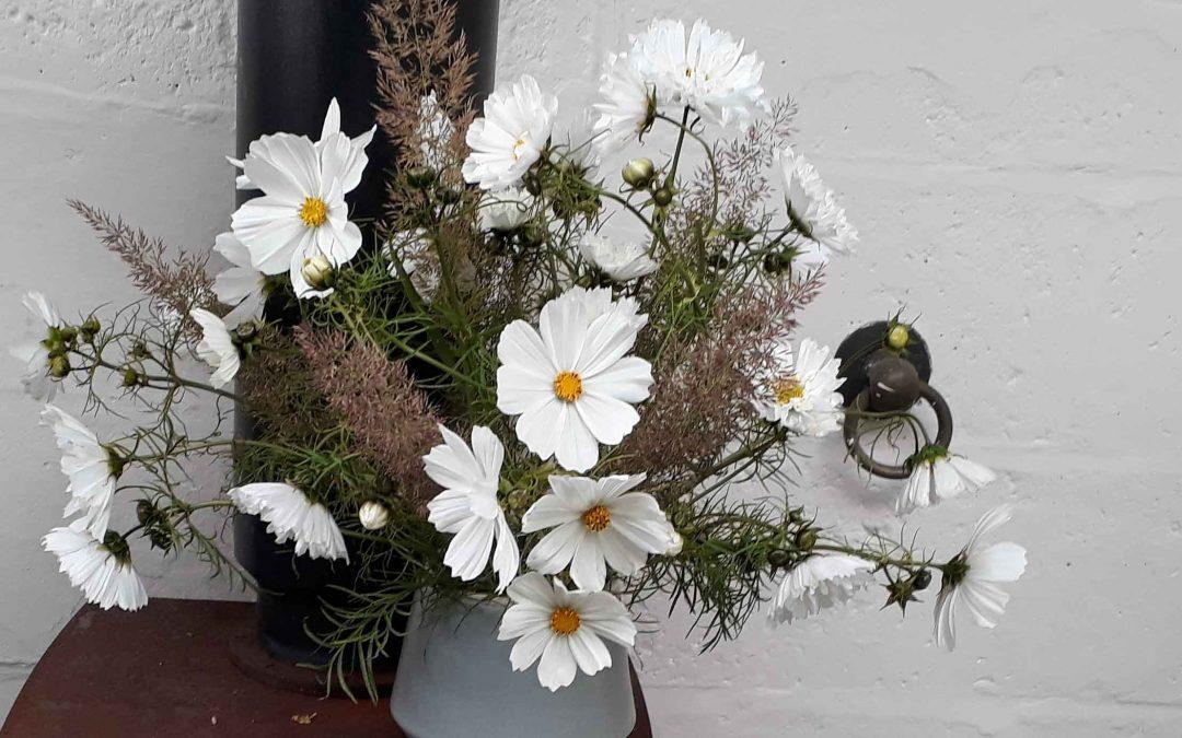 Summer Flower Club