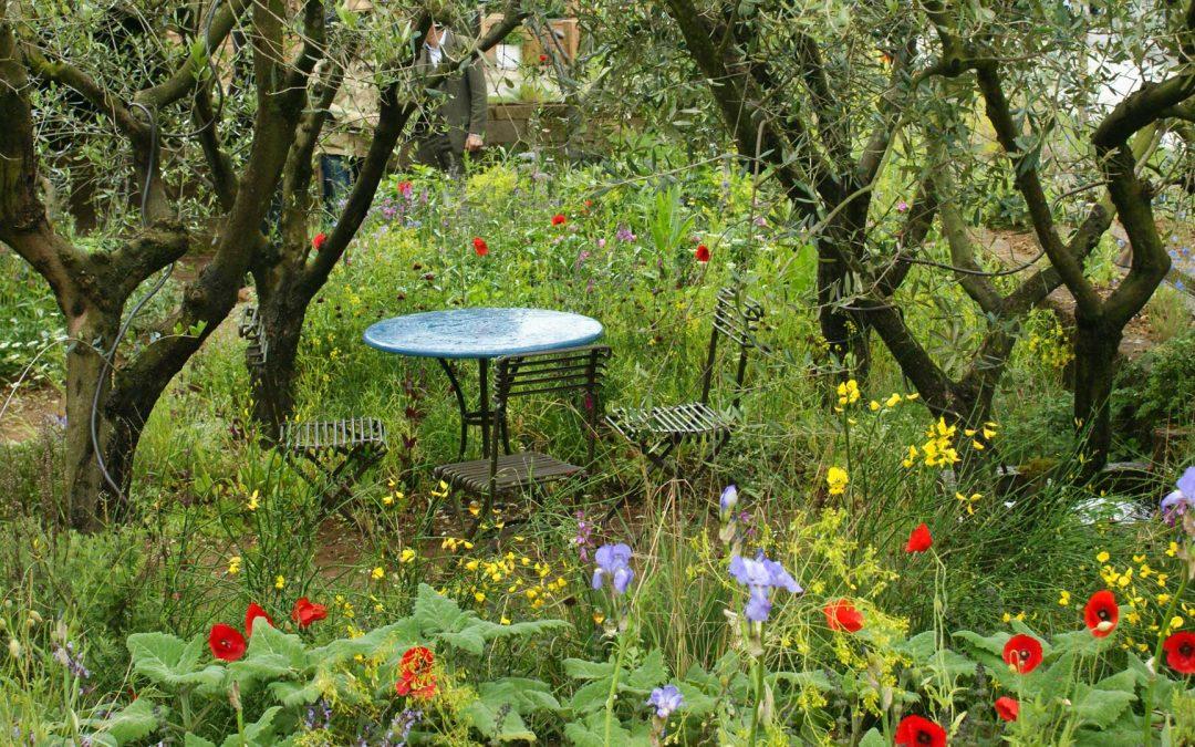 Seasonal Garden Care