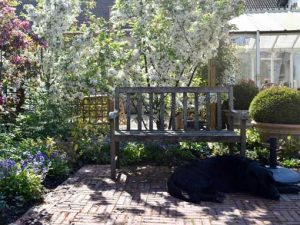Image of a well maintaned garden in spring to illustrate seasonal garden maintenance workshops
