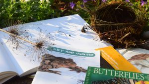 Image of the tools for planning a wildlife friendly garden. Garden workshops in bath bristol somerset and wiltshire