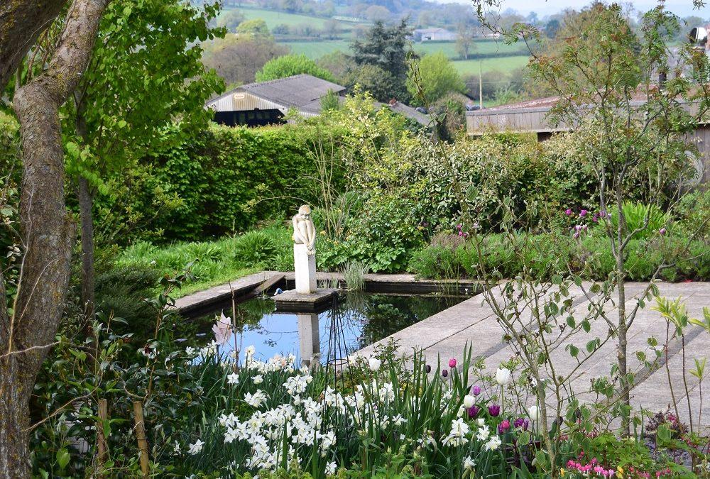 Creating a Calm Garden